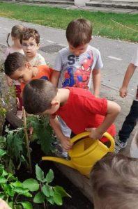 Kertészkedés-03